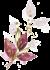 fleur-aquarelle5